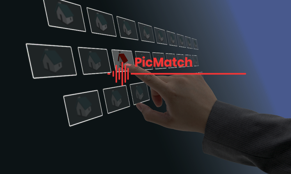 PicMatch Overview 1000600